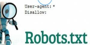 Разберете какво значи Robots.txt - iTechBG
